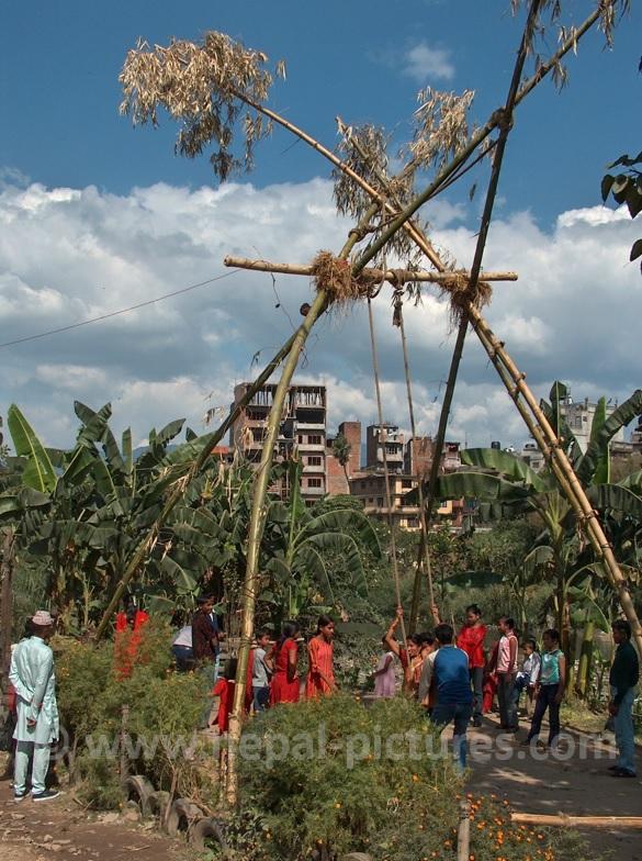 Swing, Dashain